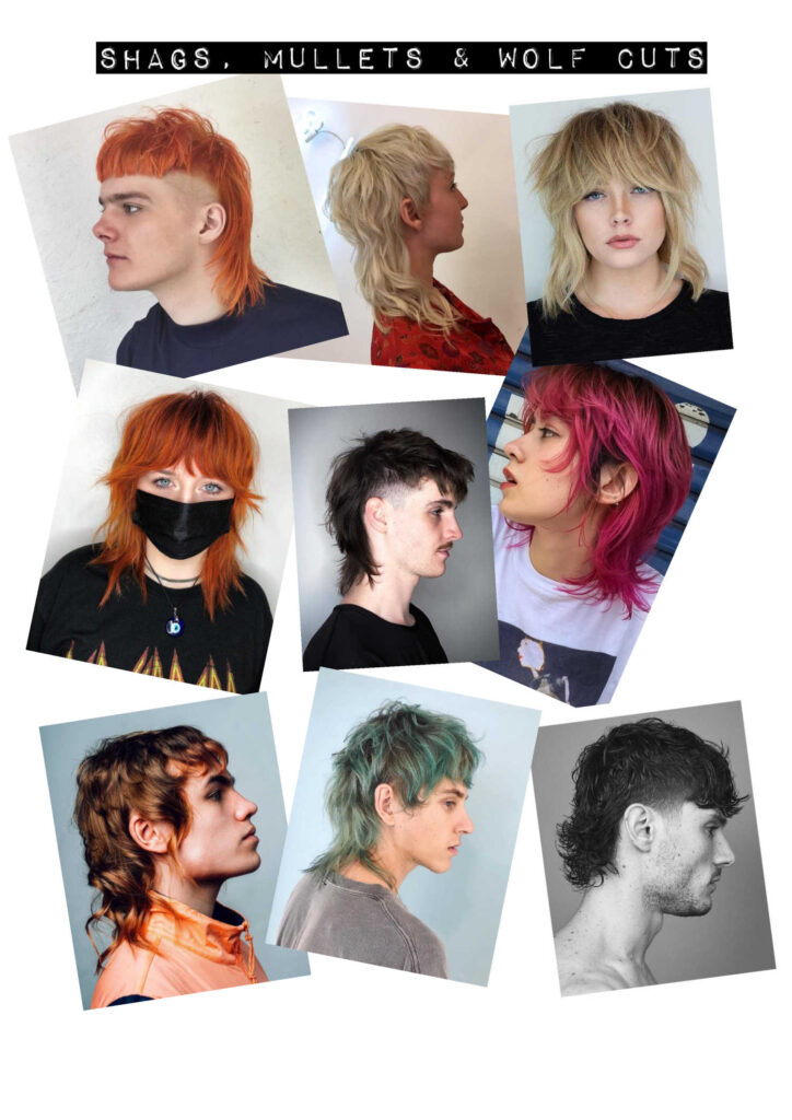 Shags, Mullets and Wolf Cuts